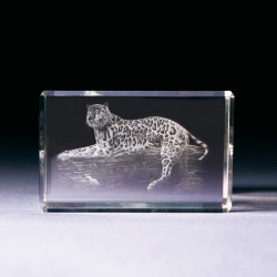 Glasblock - Leopard