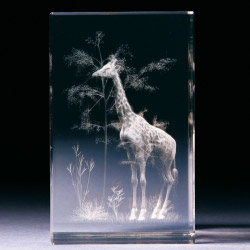 Glasblock - Giraffe