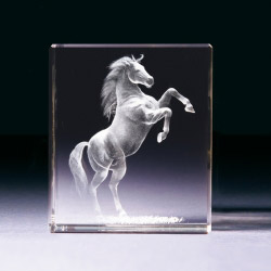 Glasblock - Mustang