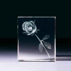 Glasblock - Rose