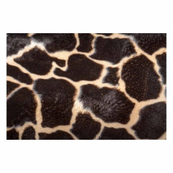 Vinyl Teppich MATTEO 60x90 cm Leopard