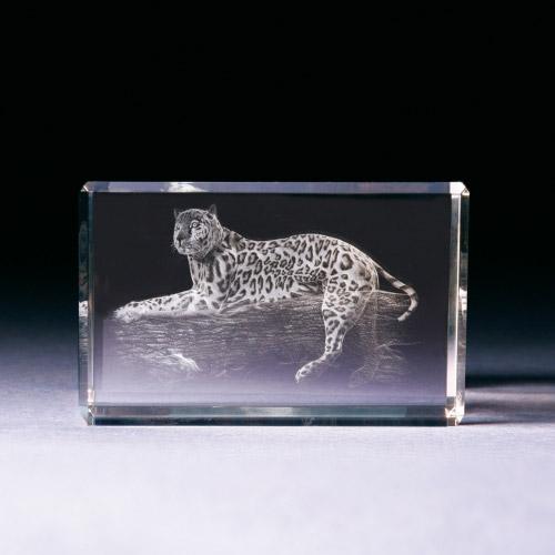 Glasblock - Leopard