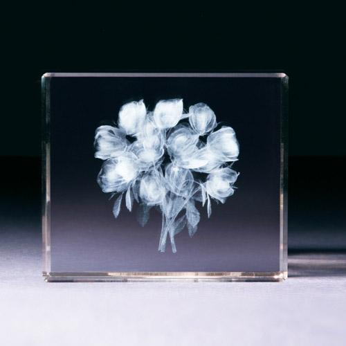 Glasblock - Rosenstrauß