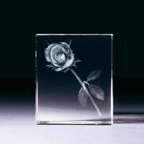 Glasblock - Rose