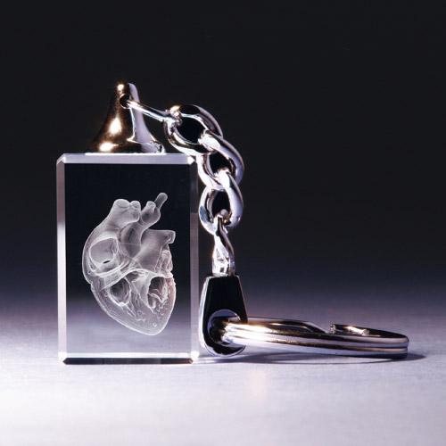 Schlüsselanhänger - Herz anatomisch