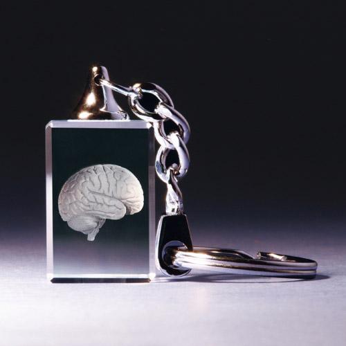Schlüsselanhänger - Gehirn anatomisch