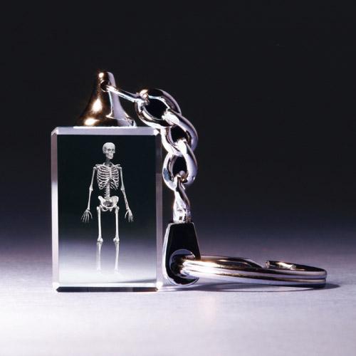 Schlüsselanhänger - Skelett anatomisch