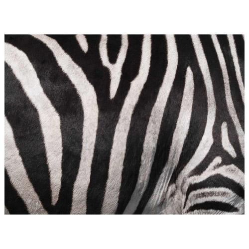 Tischset Vinyl Zebra