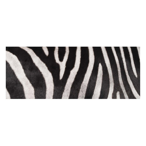 Vinyl Teppich MATTEO 70x180 cm Zebra