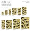 Vinyl Teppich MATTEO 70x180 cm Kakteen